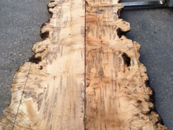 Booked matched Ambrosia maple live edge slabs